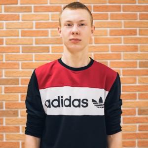 Владислав Гринин